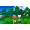 product in gebruik Pokemon Omega Ruby 3DS