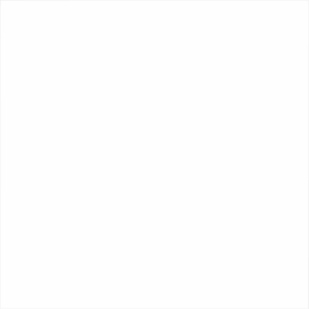 Bresser Y-9 Uitwasbaar Achtergrond Doek 3x4m Wit