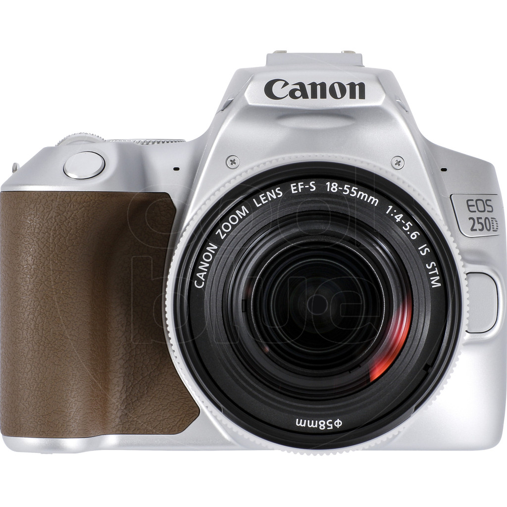 Canon EOS 250D Zilver + 18-55mm f/4-5.6 IS STM-24,1 megapixels, filmt in Full HD 1080p  Met wifi, bluetooth en NFC  Inclusief 18-55mm lens