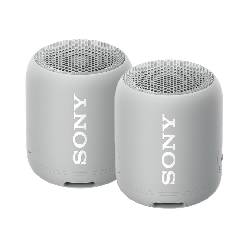 Afbeelding van de Sony SRSXB12 Duopack Grijs