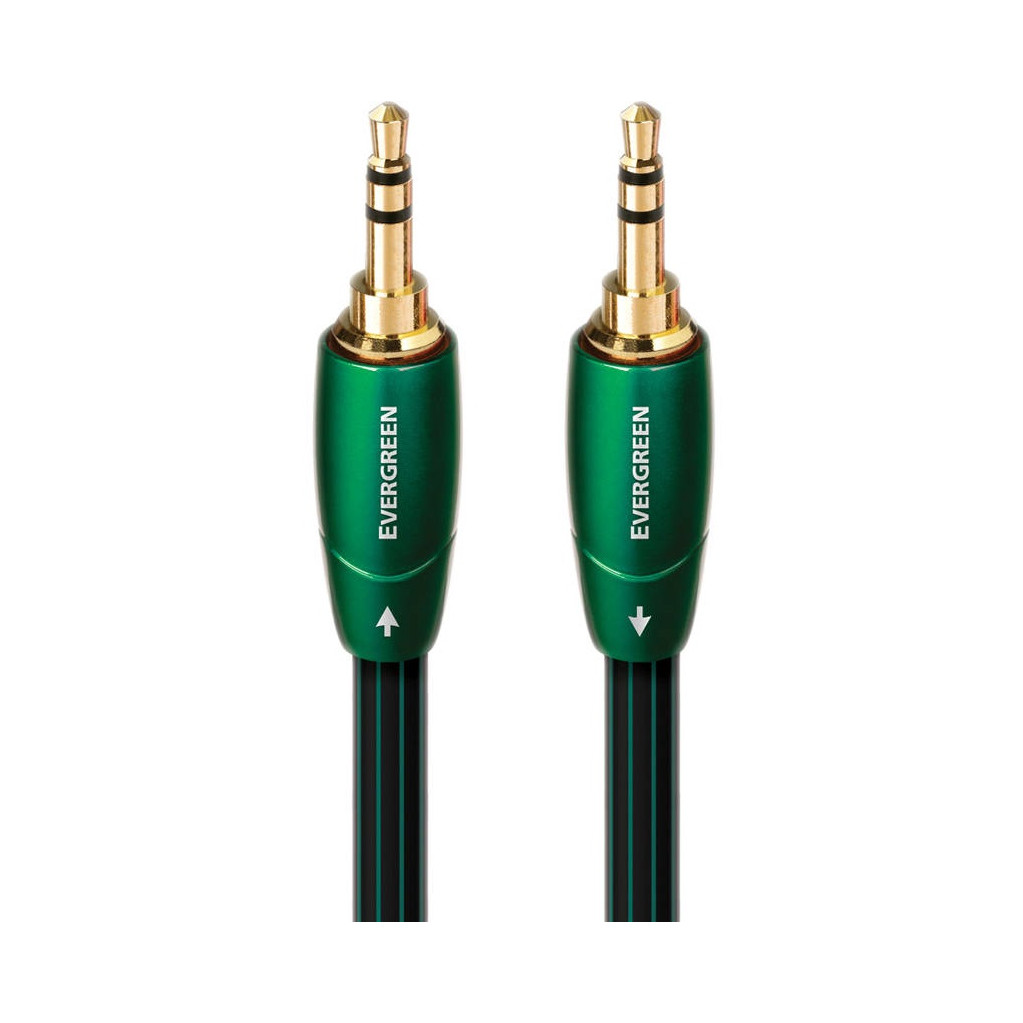 AudioQuest Evergreen 3,5 mm naar 3,5 mm 0,6 meter in Oudehorne / Aldhoarne