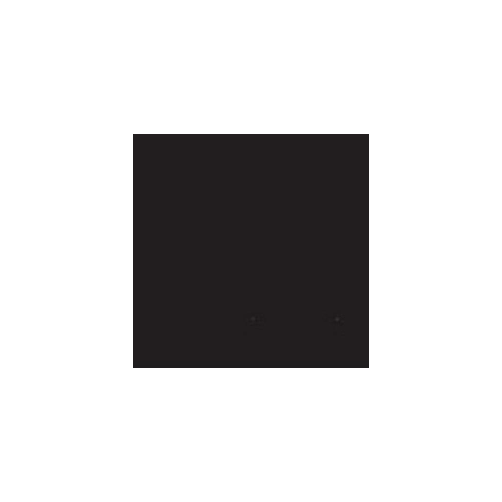 Bresser BR-9 Achtergronddoek 4x6m Zwart in Luxwoude / Lúkswâld