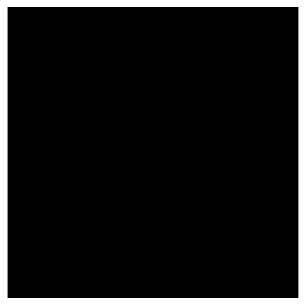 Bresser Y-9 Uitwasbaar Achtergrond Doek 3x4m Zwart