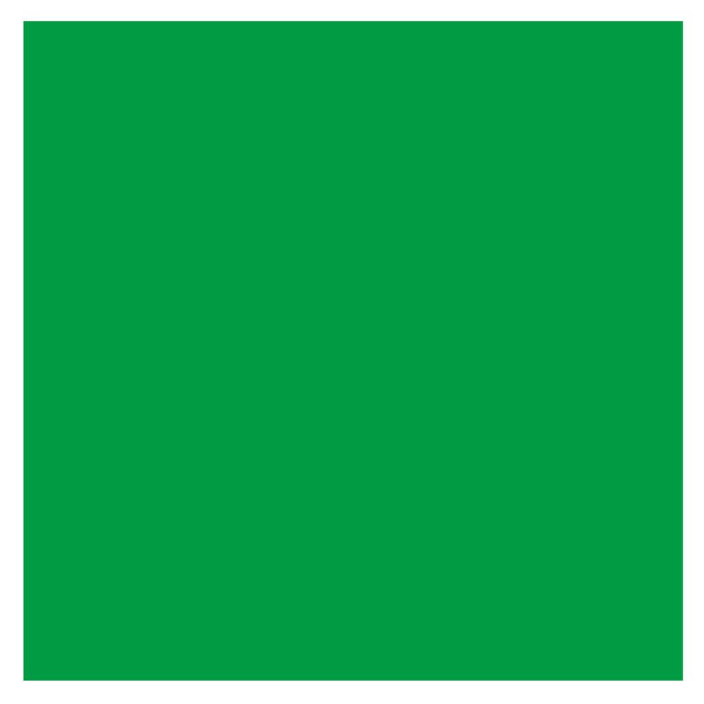 Bresser BR-9 Achtergronddoek 3x4m Groen in Nieuwendijk