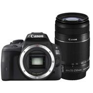Canon EOS 100D + Canon 55-250mm