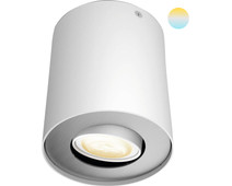 Philips Hue Pillar Mounted Spot White Ambiance 1 Light White