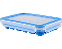 Tefal Masterseal ice cube box