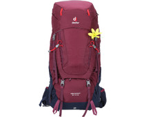 Deuter Aircontact 50L + 10L Blackberry/Navy - Slim Fit