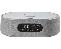 Harman Kardon Citation OASIS Gray