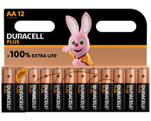 Duracell Alka Plus AA batteries 12 units