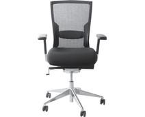 Schaffenburg Desk Chair 105