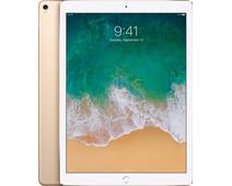 Apple iPad Pro 12,9 inch (2017) 256GB Wifi Goud