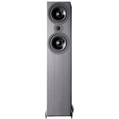 Cambridge Audio SX-80 Zwart (per stuk)