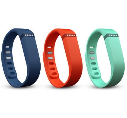 Fitbit Flex Accessory Pack - Large