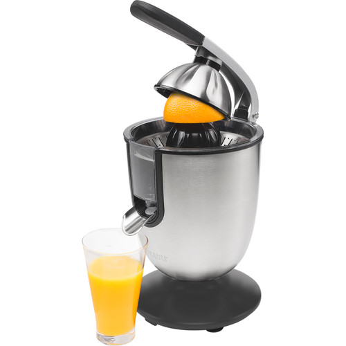 Princess Champion Juicer