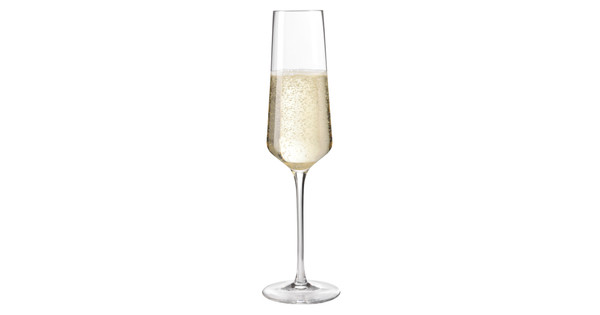 Leonardo Puccini Champagne 6 stuks