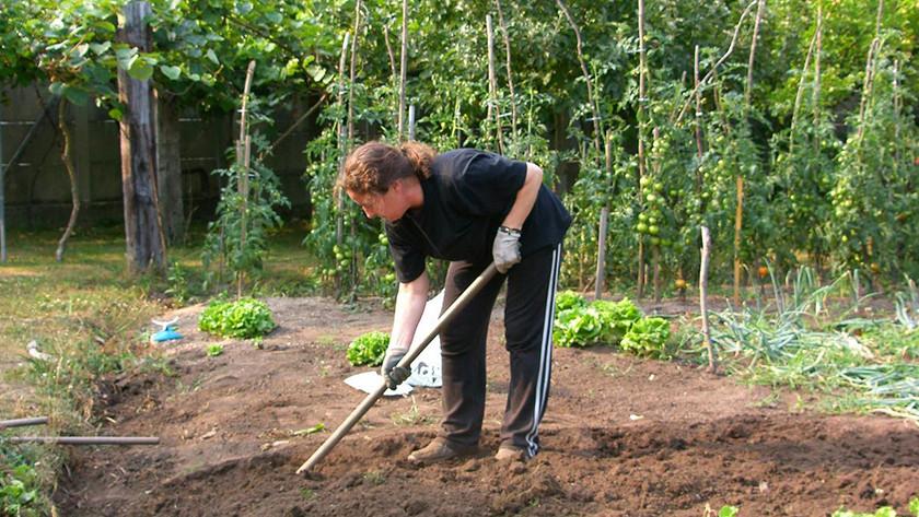 Garden environmentally conscious