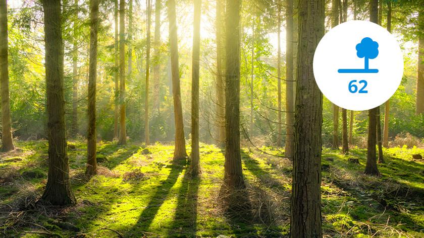 Saving in trees