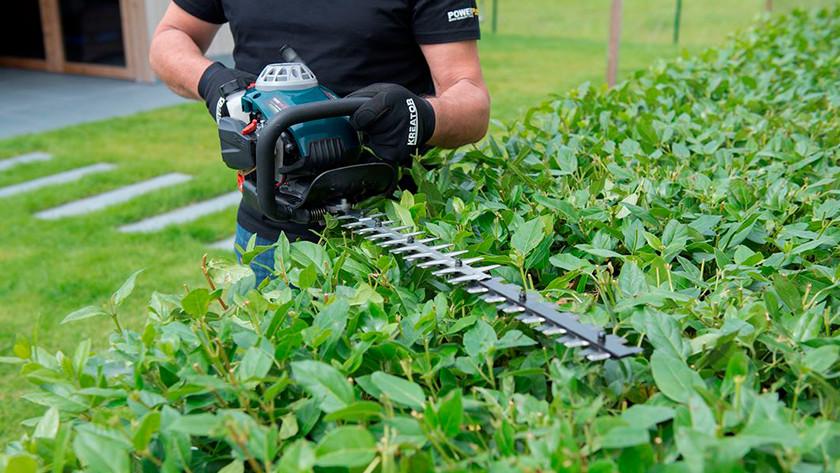 Hedge trimmer on gasoline