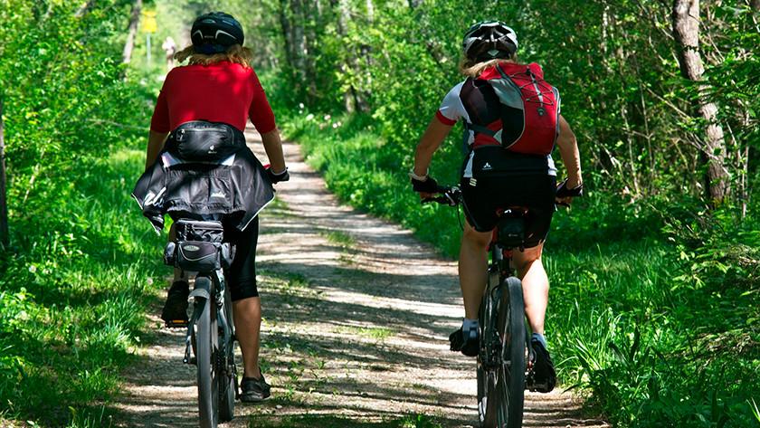 Regular cyclists