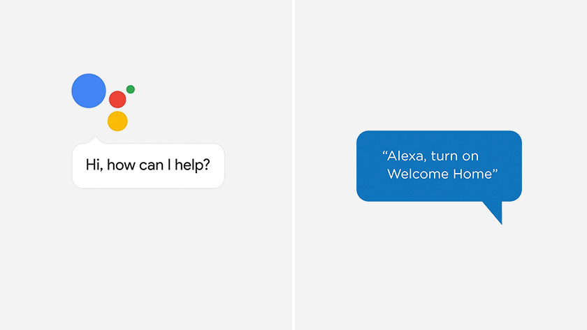 The voice assistant of Google Assistant and Amazon Alexa