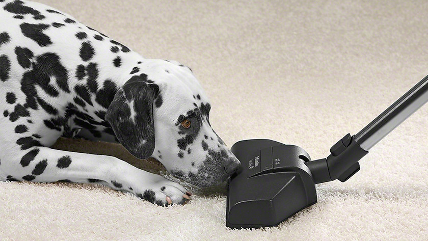 Vacuum turbo brush pet hairs