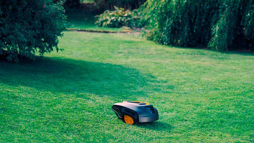 Robot lawn mower in grass