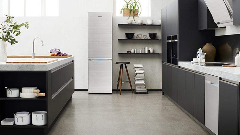 freestanding fridge
