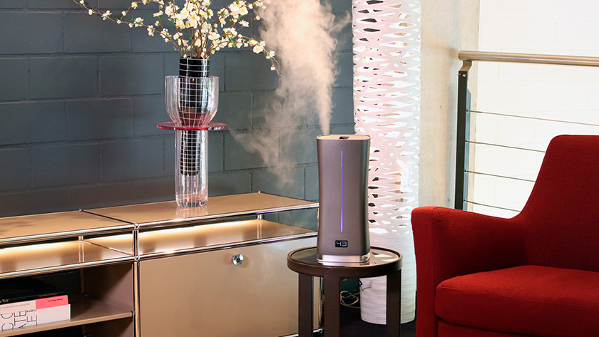 Humidifier living room