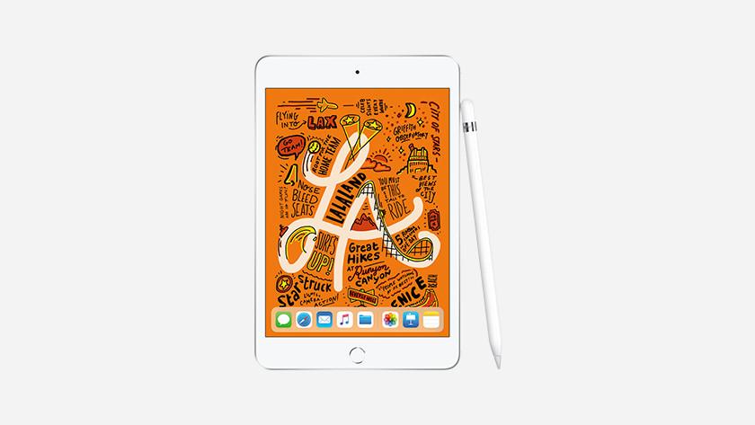 iPad Mini met Pencil 1