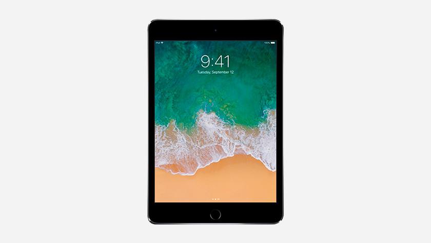 Scherm iPad Mini 4