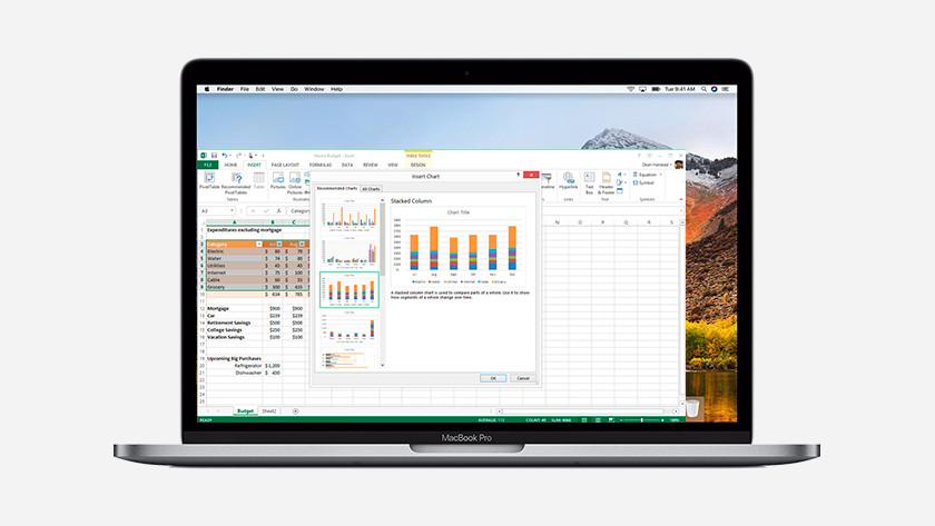 Excel on MacBook