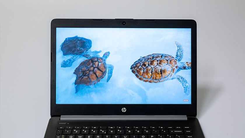 Turtles on screen HP 14-ck0910nd laptop.