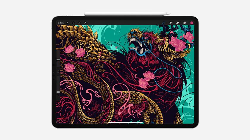 Tekenen Apple iPad