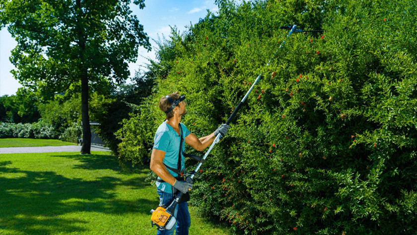 Hedge trimmer telescopic