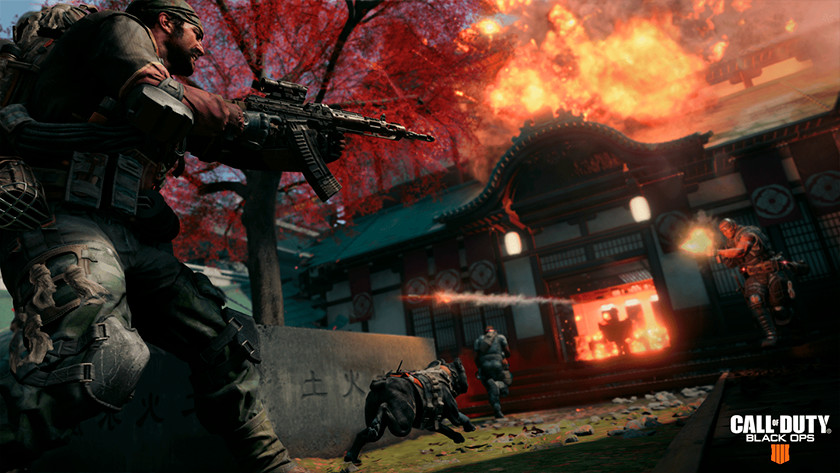 Call of Duty 4 Battle Royale
