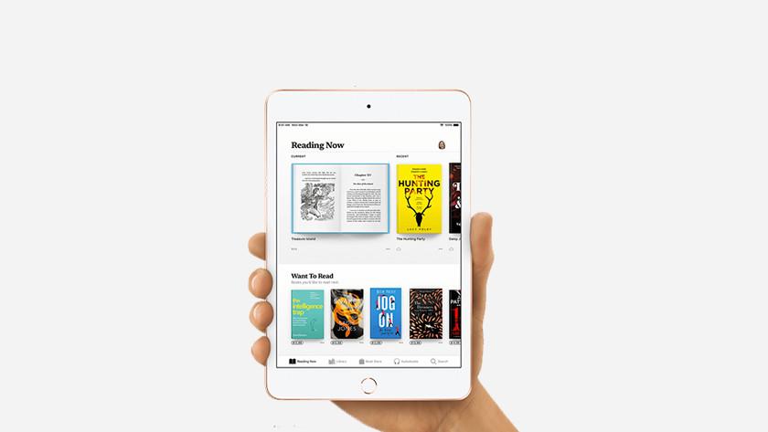 iPad Mini 5 size