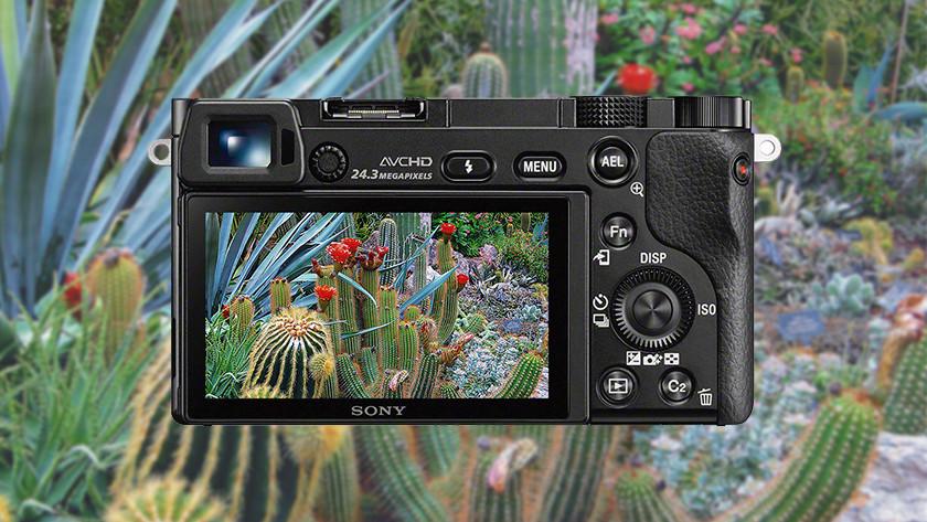 24,3 megapixel camera