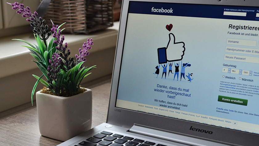 Laptop with Facebook open on desk with a plant in a pot beside it.