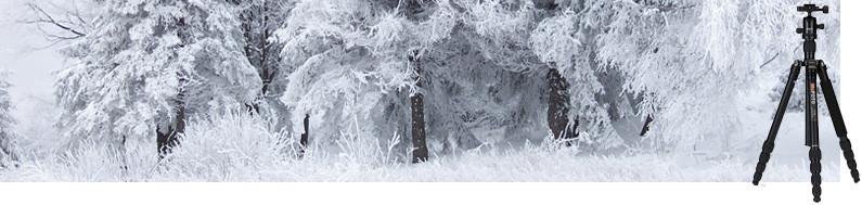 Winterfoto's