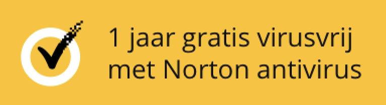 Virus free for 1 year with Norton antivirus