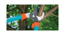 Branch cutters