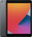 iPad (2020)  in spacegrey