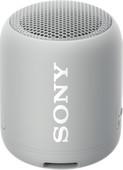Sony SRS-XB12 Gray