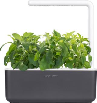Click & Grow Smart Garden 3 - Dark Gray