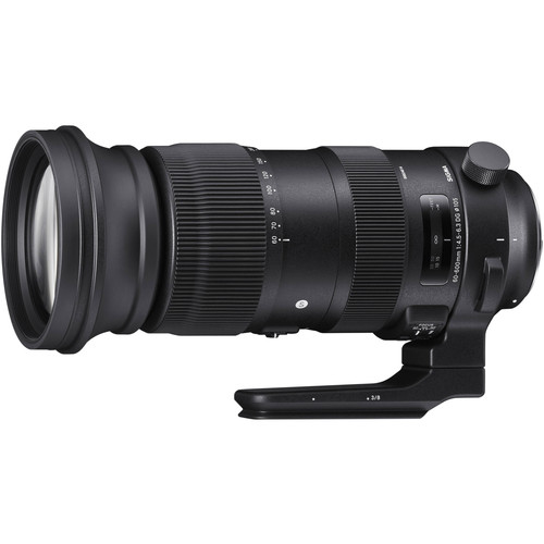 Sigma 60-600mm f/4.5-6.3 DG OS HSM Sports Canon EF Main Image