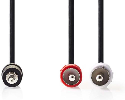 Nedis 3,5 mm naar RCA Kabel 1 Meter Zwart Main Image