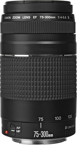 Canon EF 75-300mm f/4.0-5.6 III Main Image
