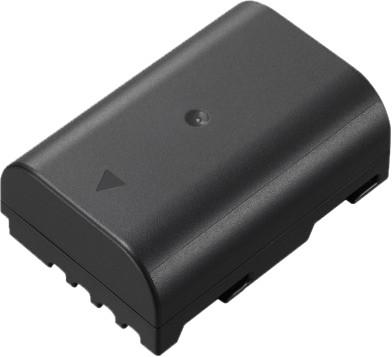 Panasonic DMW-BLF19E Main Image