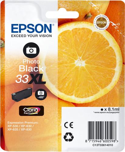 Epson 33XL Cartridge Photo Black Main Image